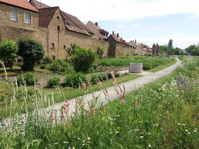 Ansichten der Grabengärten im Mai 2018