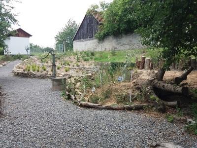 Naturgarten - hortus nocte - am Tag der offenen Gartentür
