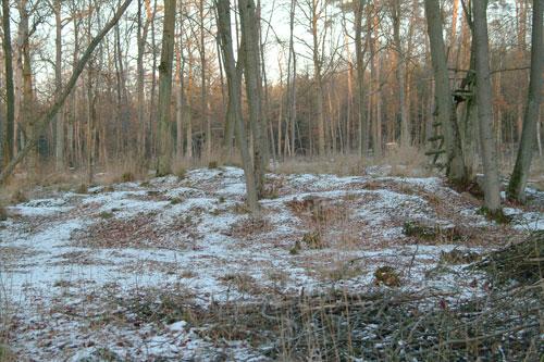 Hügelgrab aus der Hallstadtzeit.