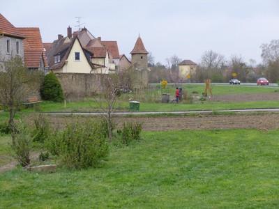 Starterpakete für Grabengärten